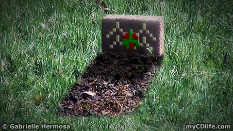 spider grave